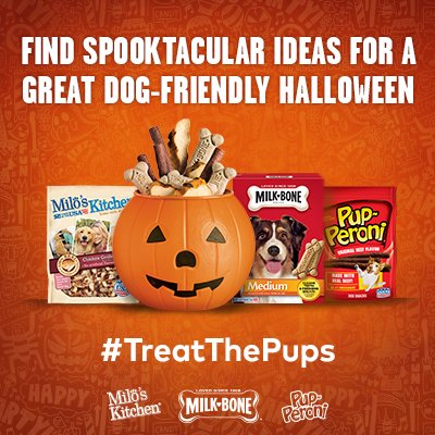 Treat The Pups DIY Halloween Ideas