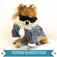 Fashion Friday: Pom Pom Chewy