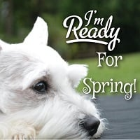 BlogPaws Blog Hop: Wordless Wednesday – Hurry Spring!