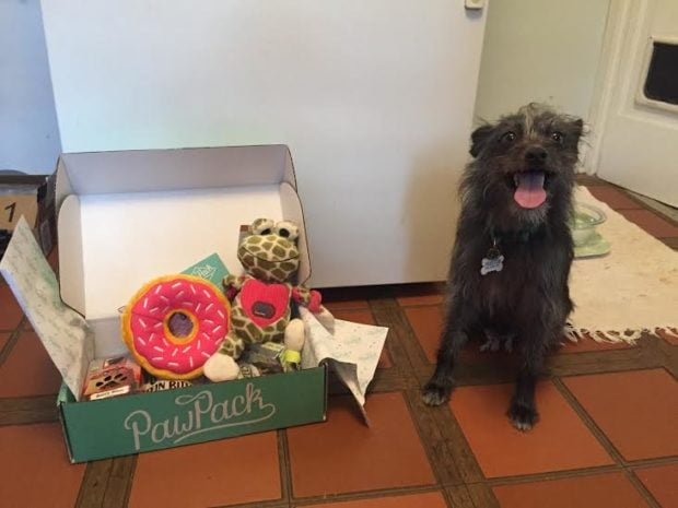 PawPack Dog Monthly Subscription Box