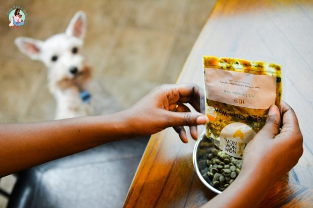Feeding Homemade Dog Food NomNomNow