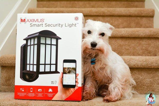Maximus Smart Security Light - Protect your home and pets