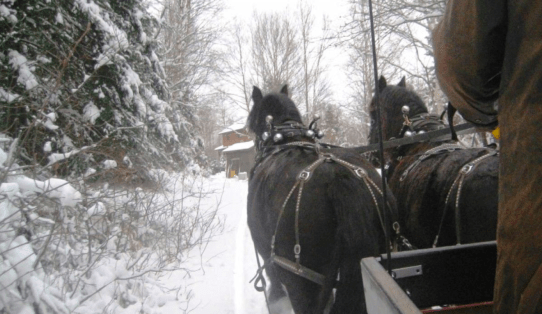 Sleigh Ride with Yours Outdoors