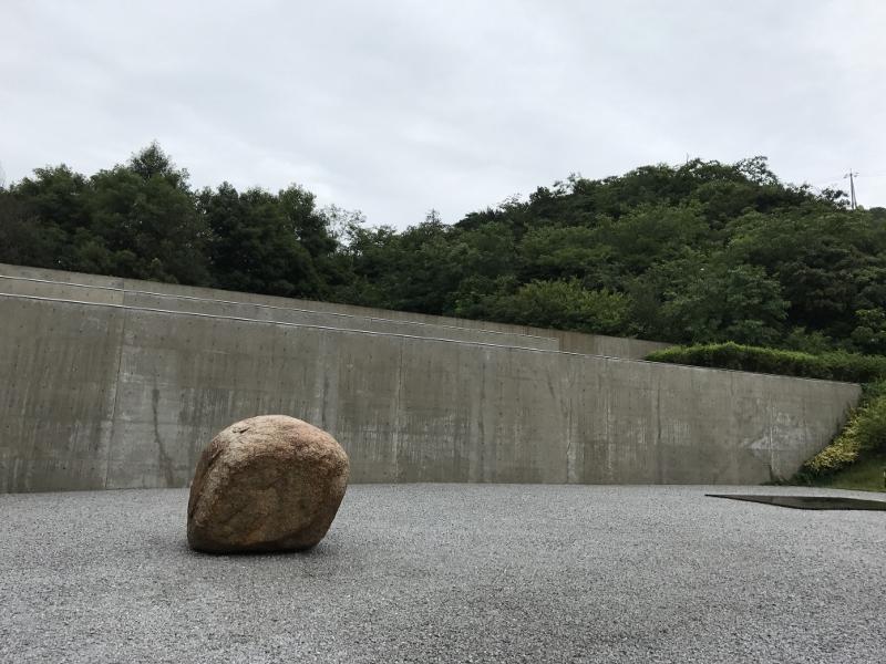 2017-07-05 11.42.49 (800x600)