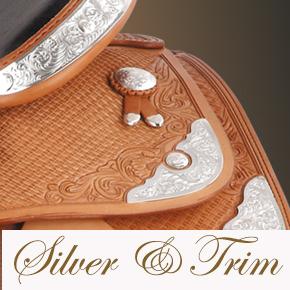 Silver & Trim Image