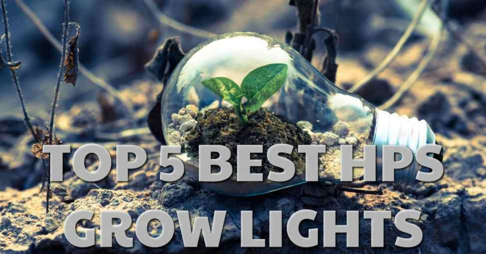 Top rated hps grow lights for indoor gardening