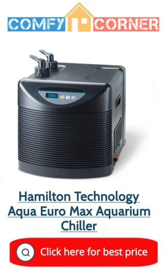 Water Chiller Hydroponics: The Definitive Buying Guide for Gardeners