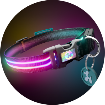 Squeaker_Poochlight_LED_LightUp_RGB_Collar_Double_Rainbow.png