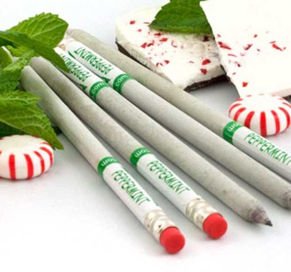 smart-smencil-peppermint-scented-pencil.jpg