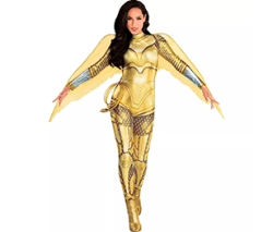 DC Comics Adult Gold Armor Wonder Woman Costume