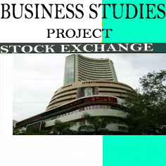 Business Studies Project on Stock Exchange