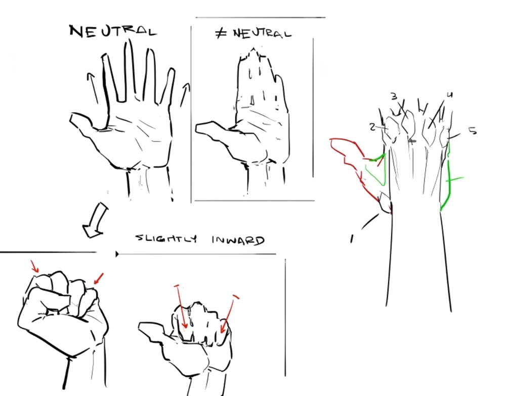 comic-book-video-tutorials-anatomy-quick-tips-hands