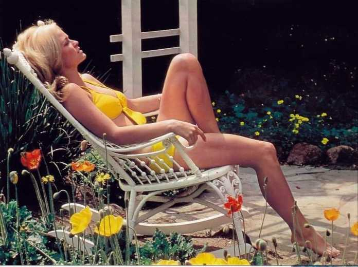 farrah fawcett bikini