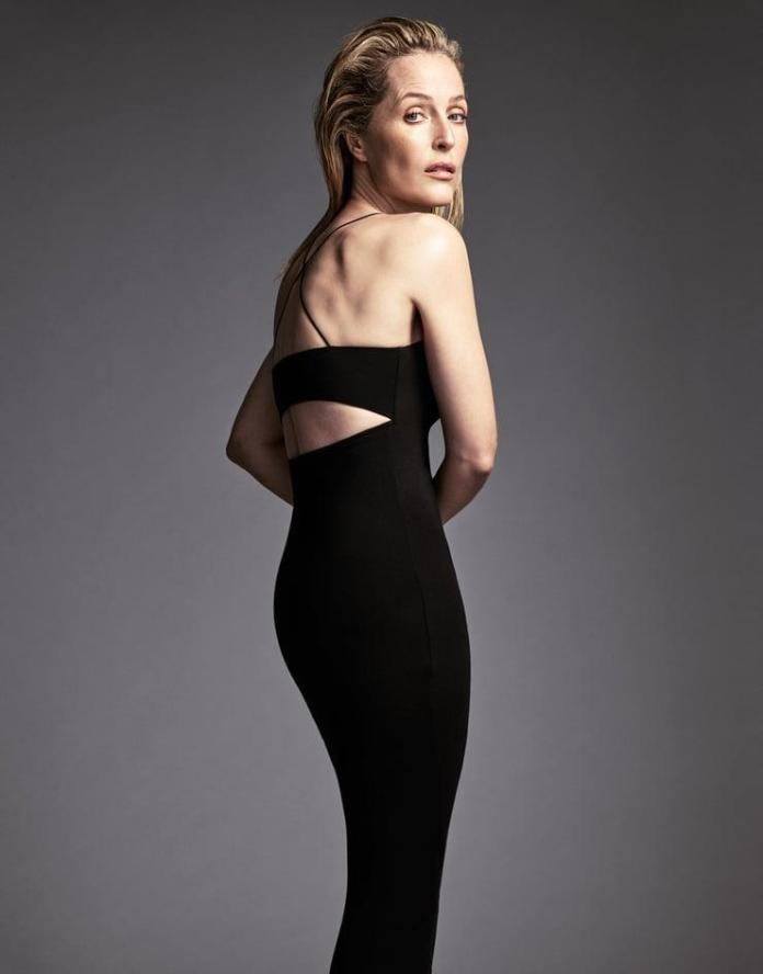 Gillian Anderson hot look