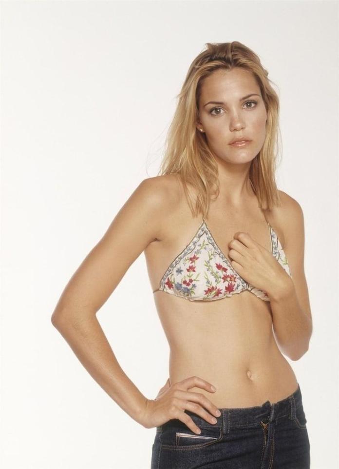 Leslie Bibb sexy