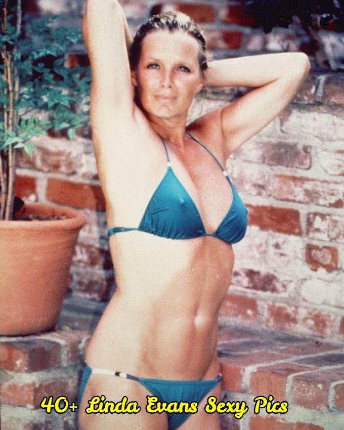 Linda Evans sexy pics