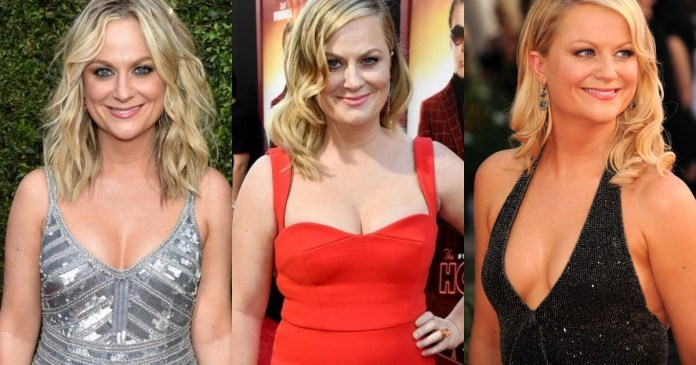 41 Hottest Pictures Of Amy Poehler