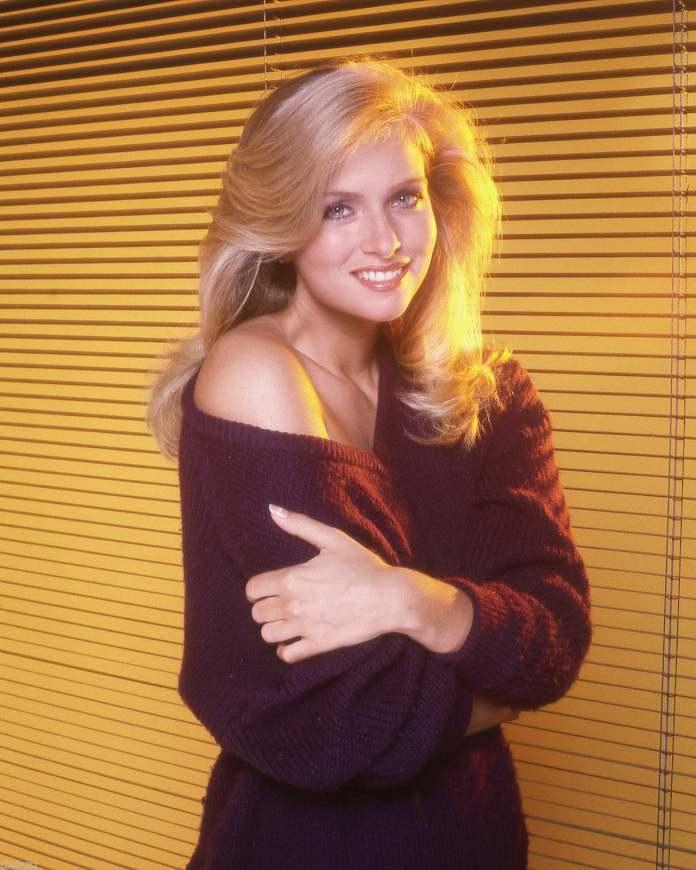 Donna Dixon sexy look