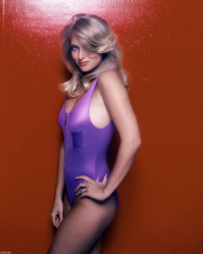Donna Dixon sexy