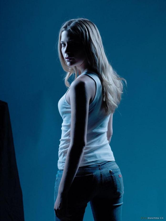 Sarah Roemer hot