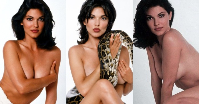 41 Hottest Pictures Of Laura Harring