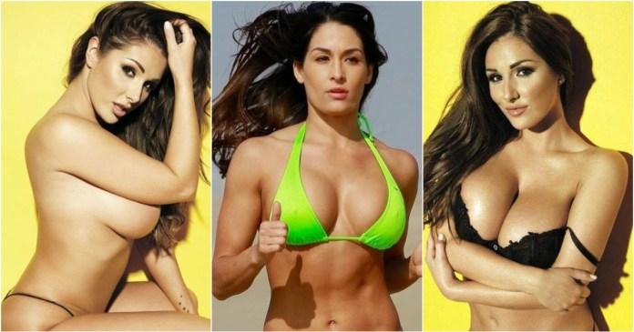 41 Hottest Pictures Of Nikki Bella
