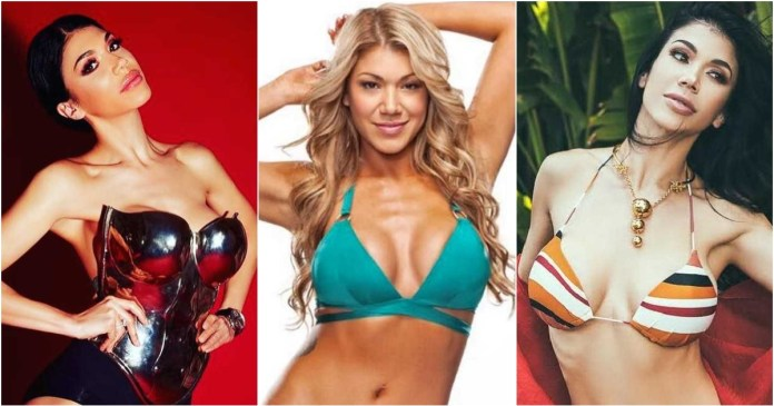 41 Hottest Pictures Of Rosa Mendes
