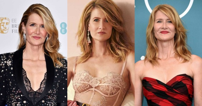 41 Sexiest Pictures Of Laura Dern