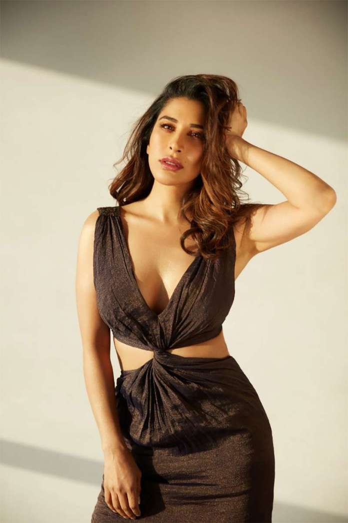 Sophie Choudry sexy pic