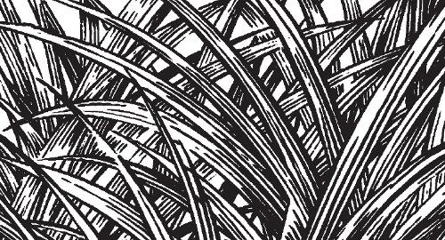 Mensch wie Gras wie - Detail