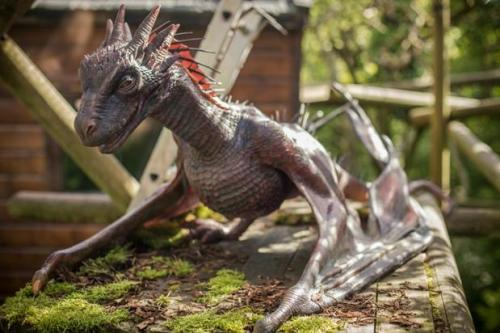 animatronic dragon at belfast zoo game of thrones Drogon