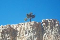 bryce-canyon-utah-hoodoos-a013