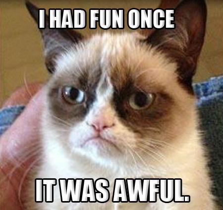Grumpy Cat IT WAS AWFUL