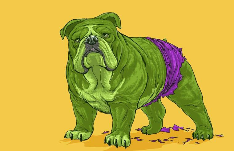 josh lynch marvel dogs 014 hulk