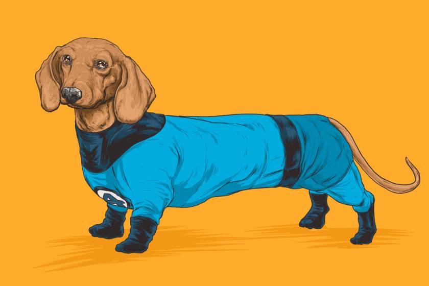 josh lynch marvel dogs 015 mr fantastic