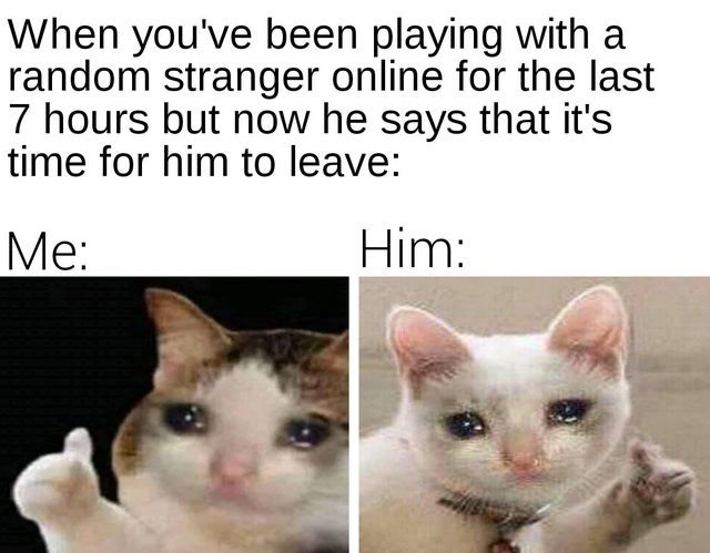 Thumbs Up Crying Cat Memes Comics And Memes