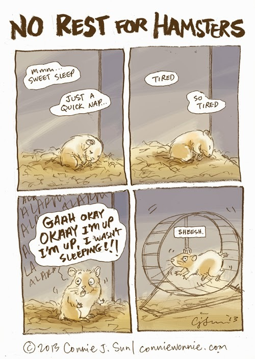 drawing no rest for hamsters w500.jpg