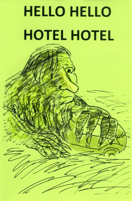 HELLO HELLO HOTEL HOTEL to debut at Short Run
