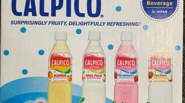 Calpico sample pack