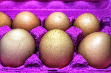 Los huevos se refrigeran