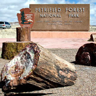 Visitando el Parque Nacional – Petrified National Park AZ. Video