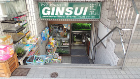 Ginsui