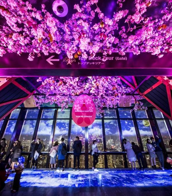 TOKYO TOWER CITY LIGHT FANTASIA〜夜桜バージョン〜