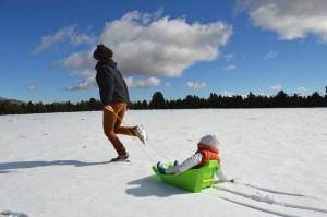 北海道あるあるネタ:そりは遊び道具ではない