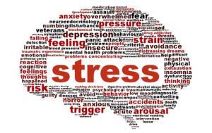 ストレスを受け止める