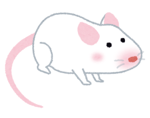 mouse_white