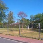 Espaces verts en péril dans le quartier ! Réagir !