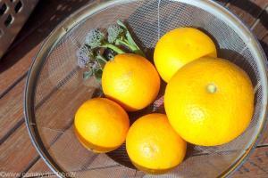 お裾分けのハッサクとオレンジ