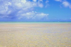 ピーターブルースの天国の海 サンドバー
