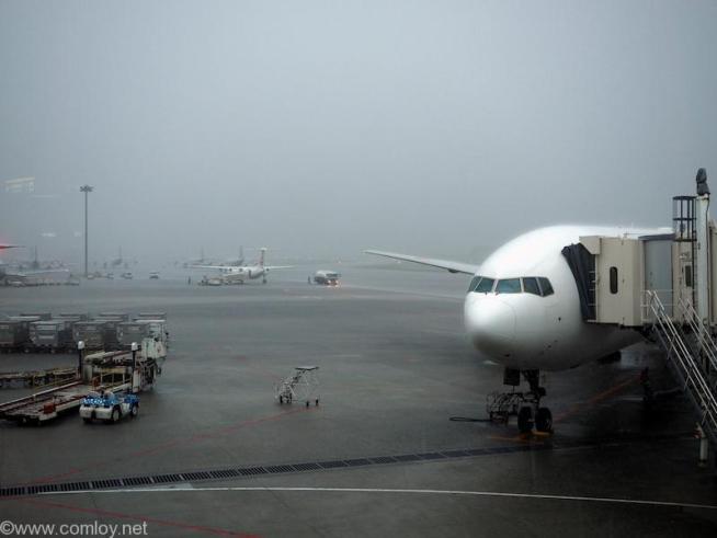 日本航空 JAL919 羽田 - 沖縄 那覇空港到着